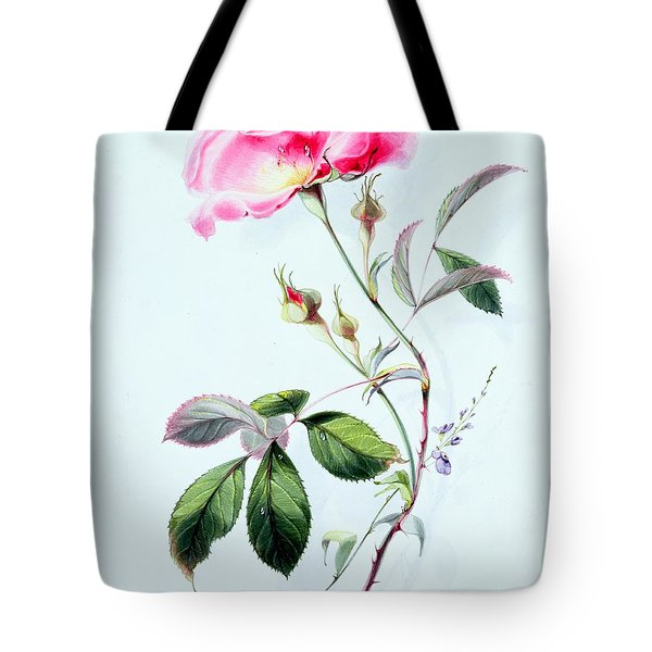 A Rose Tote Bag by James Holland