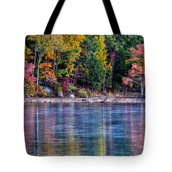 A Second Spring Tote Bag by Mitch Cat