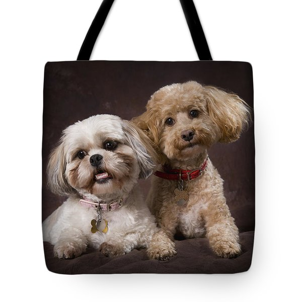 A Shihtzu And A Poodle On A Brown Tote Bag by Corey Hochachka