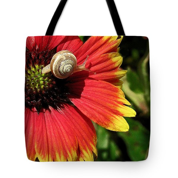 A Snail's Pace Tote Bag