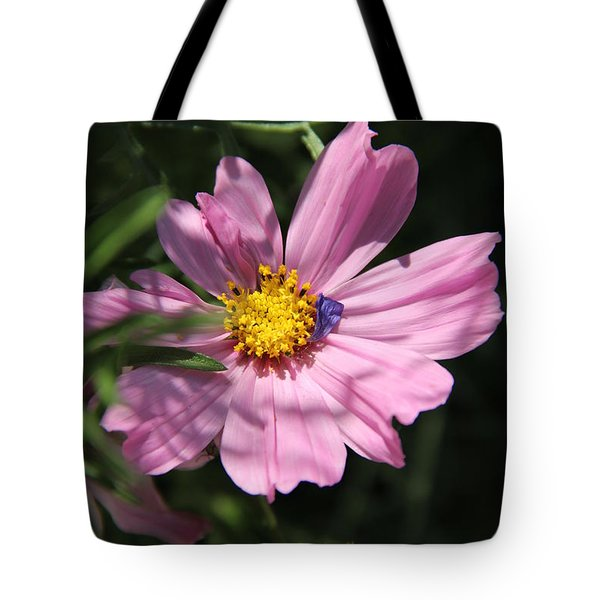 A Soft Landing Tote Bag