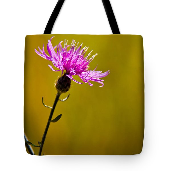 A Solitary Moment Tote Bag by Nancy Harrison