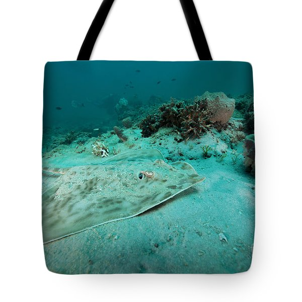 A Southern Stingray On The Sandy Bottom Tote Bag by Michael Wood