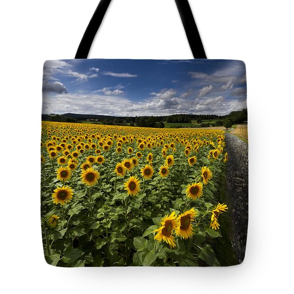 A Sunny Sunflower Day Tote Bag by Debra and Dave Vanderlaan