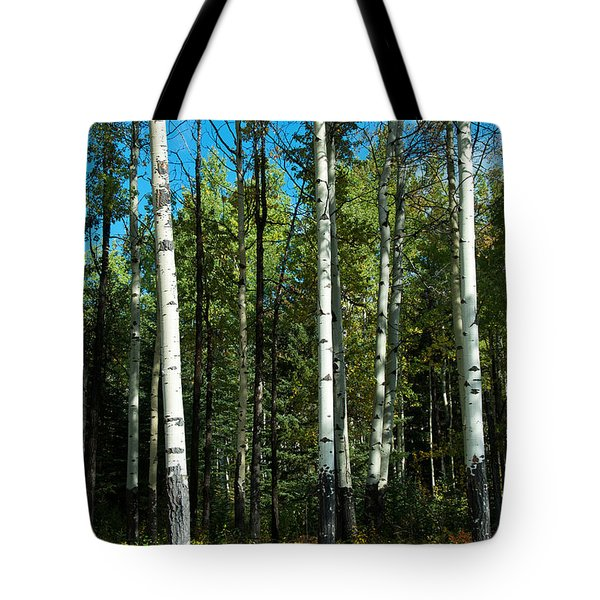 Tote Bag featuring the photograph A Touch Of Autumn by Bob and Nancy Kendrick