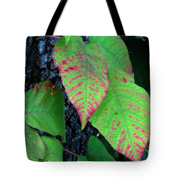 A Touch Of Autumn Tote Bag by Darleen Stry