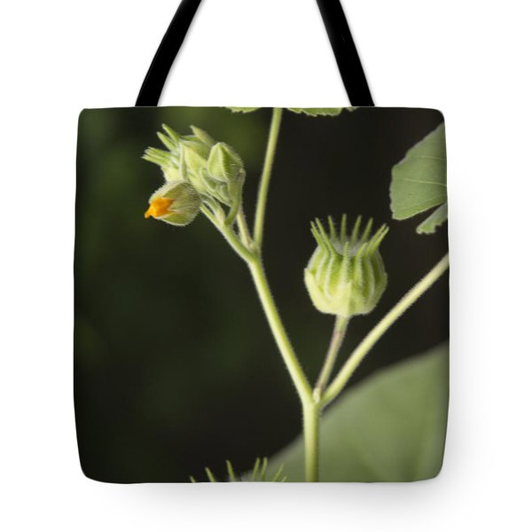 A Touch Of Yellow Tote Bag
