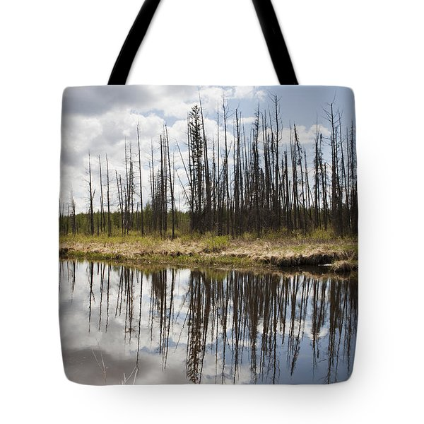 Tote Bag featuring the photograph A Tranquil River With A Reflection by Susan Dykstra