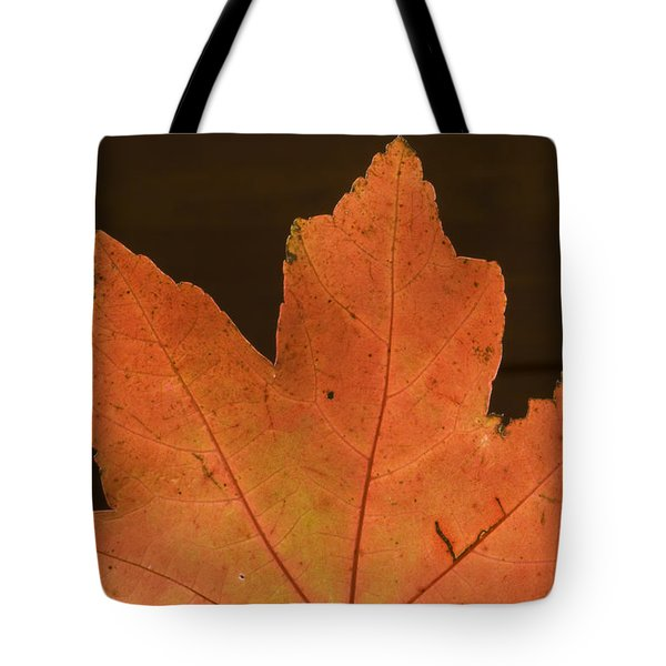 A Vibrant Colored Leaf Tote Bag by Joel Sartore