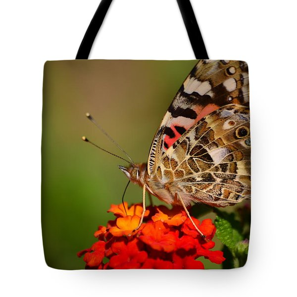 A Wing Of Beauty Tote Bag