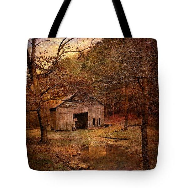 Abandoned Barn Tote Bag by Jai Johnson