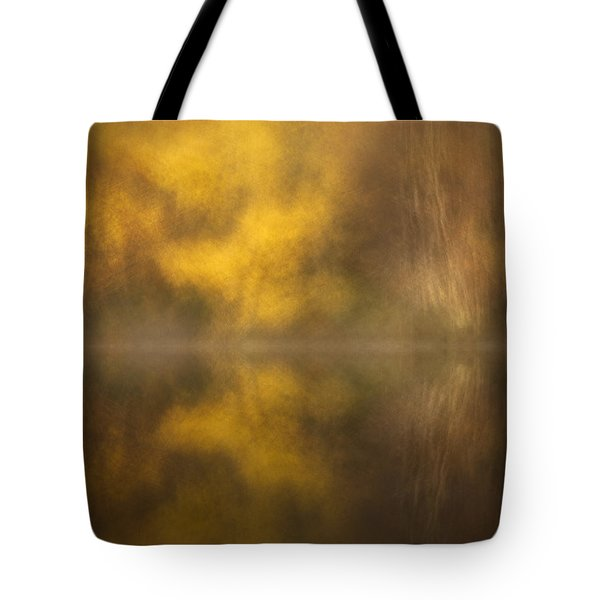 Abstract Birch Reflections Tote Bag by Andy Astbury