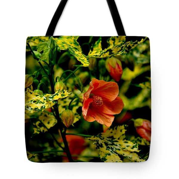 Abutilon  Tote Bag by Tanya  Searcy