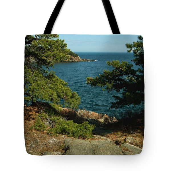 Acadia In Maine Tote Bag by Rick Frost