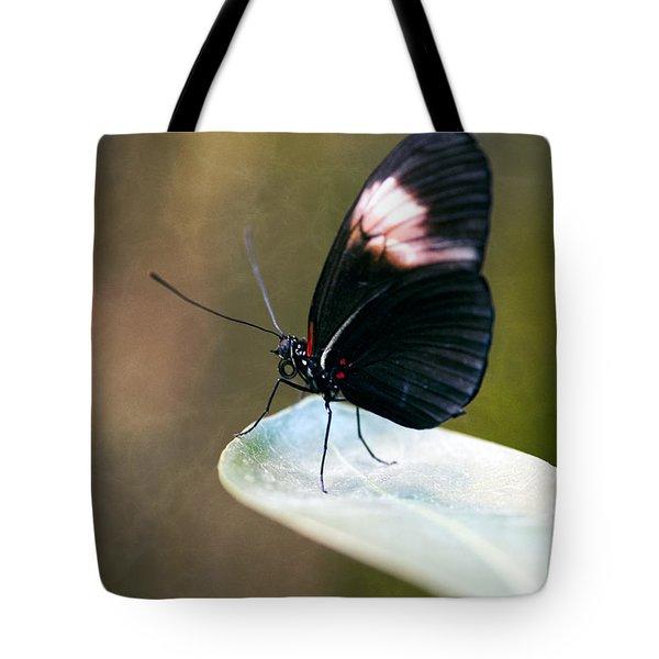 Acrophobia Tote Bag by Charles Dobbs