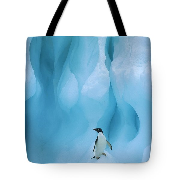 Adelie Penguin Pygoscelis Adeliae Tote Bag by Colin Monteath