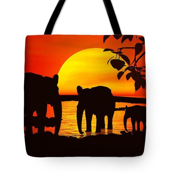 Africa Tote Bag by Robert Orinski