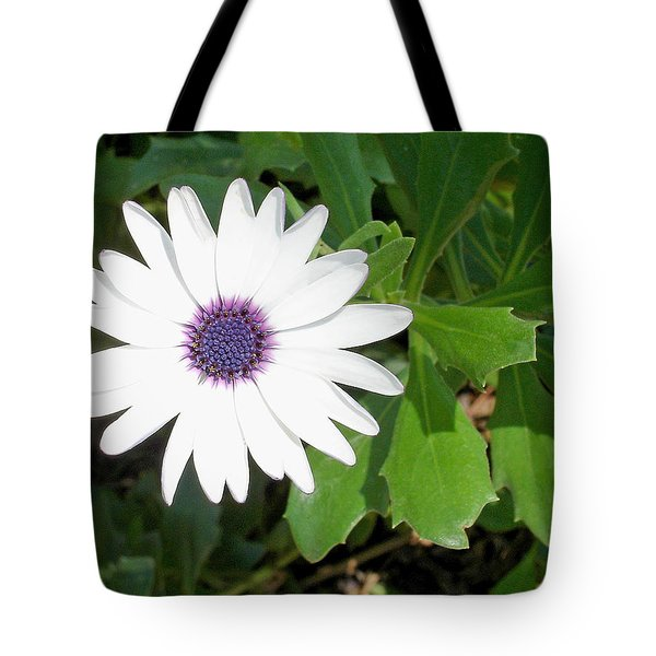 African Moon Flower Tote Bag by Lisa Phillips