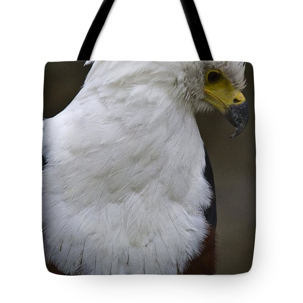 African Sea Eagle 5 Tote Bag by Heiko Koehrer-Wagner