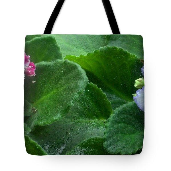 African Violets Intertwined II Tote Bag by Nancy Mueller