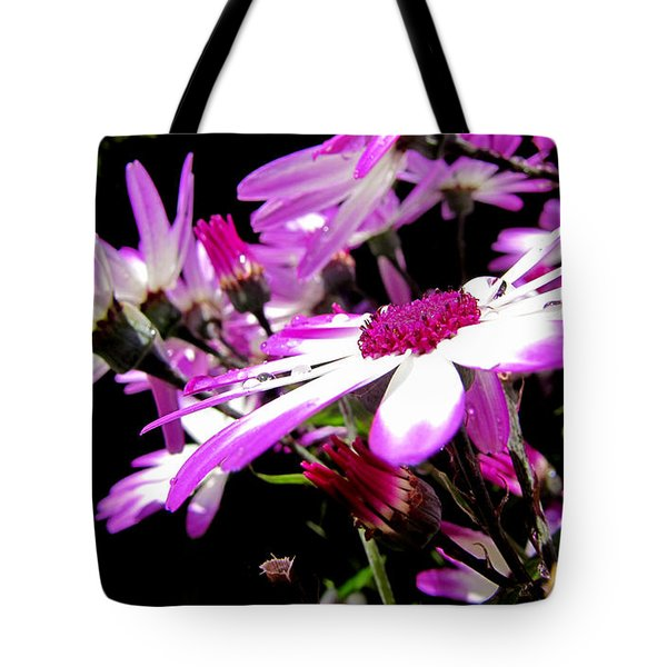 Tote Bag featuring the photograph After The Rain by Barbara Walsh
