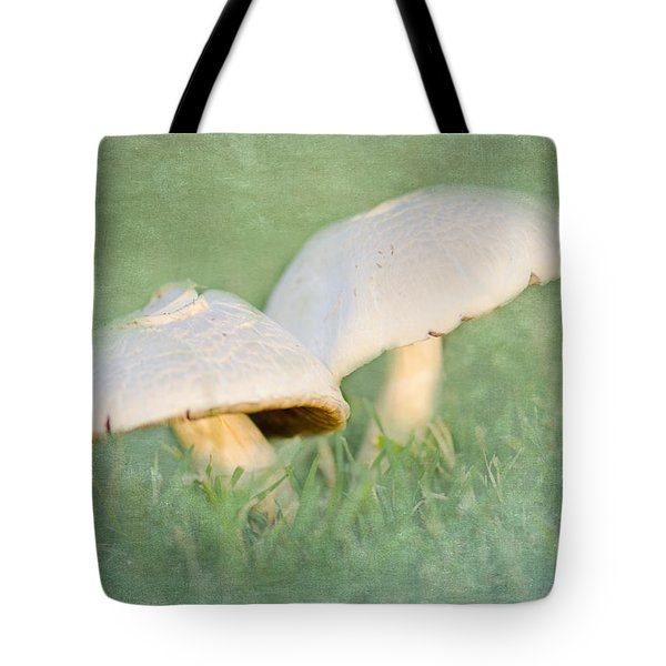 After The Rain Tote Bag by Betty LaRue