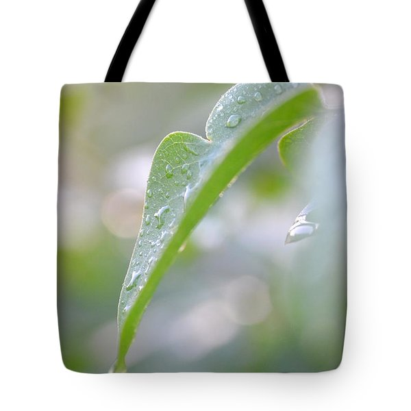 Tote Bag featuring the photograph After The Rain by JD Grimes