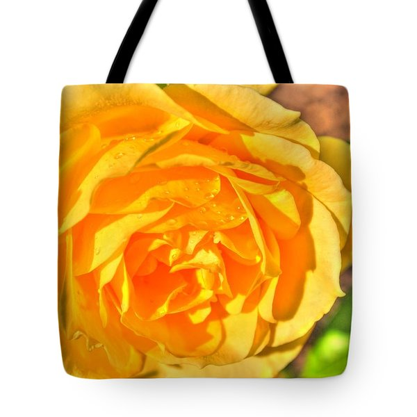 Tote Bag featuring the photograph After The Rain by Michael Frank Jr