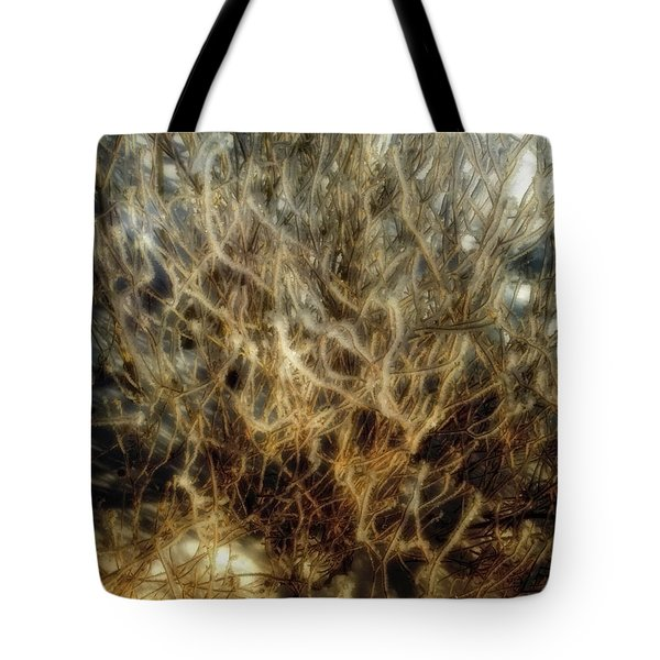After The Snow Tote Bag by Ellen Heaverlo
