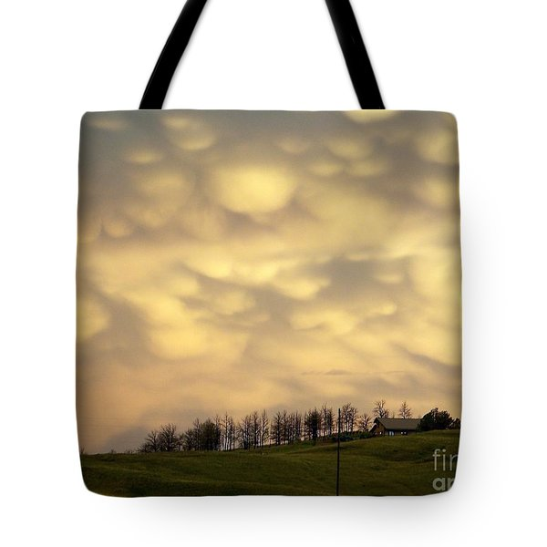 After The Storm Tote Bag by Dorrene BrownButterfield
