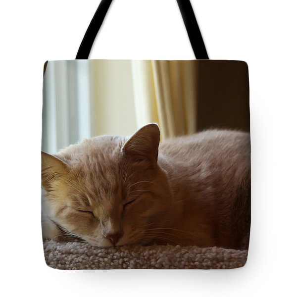 Afternoon Kip Tote Bag