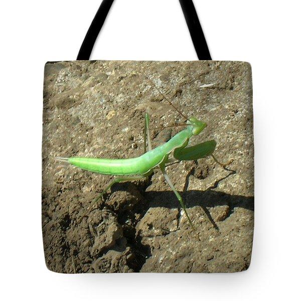 Afternoon Shadow Tote Bag