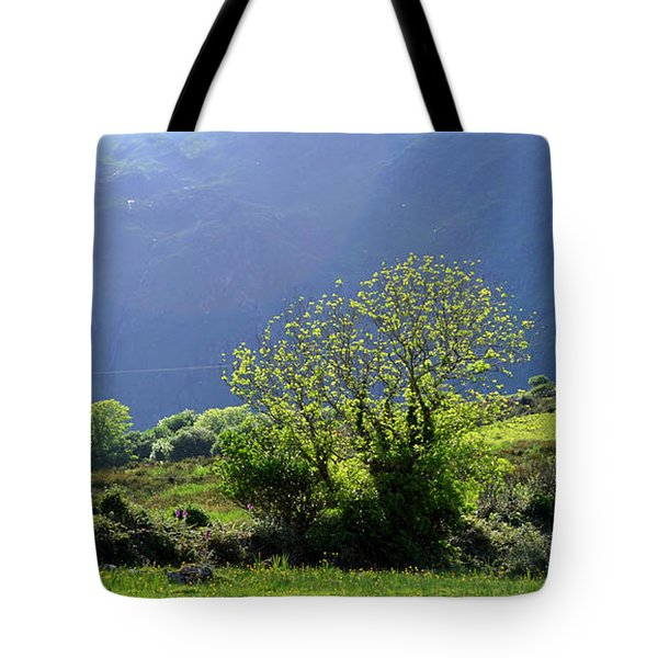 Tote Bag featuring the photograph Against The Light by Barbara Walsh