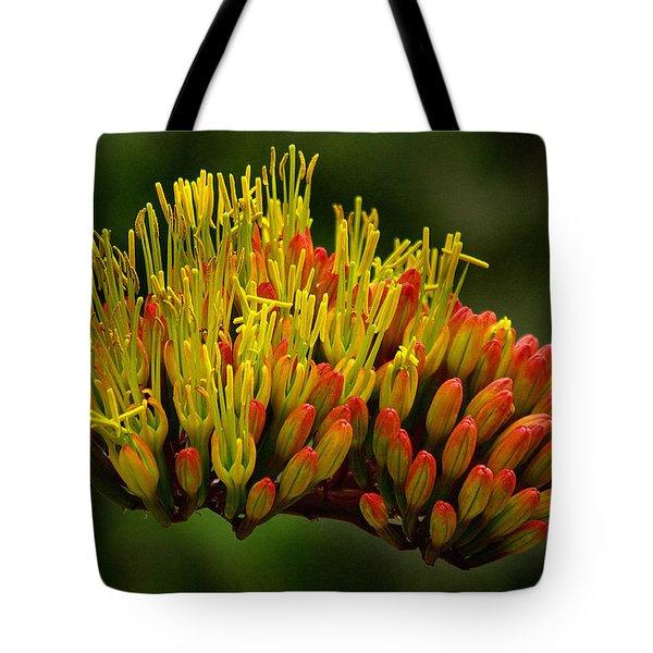 Agave Bloom Tote Bag by Vicki Pelham