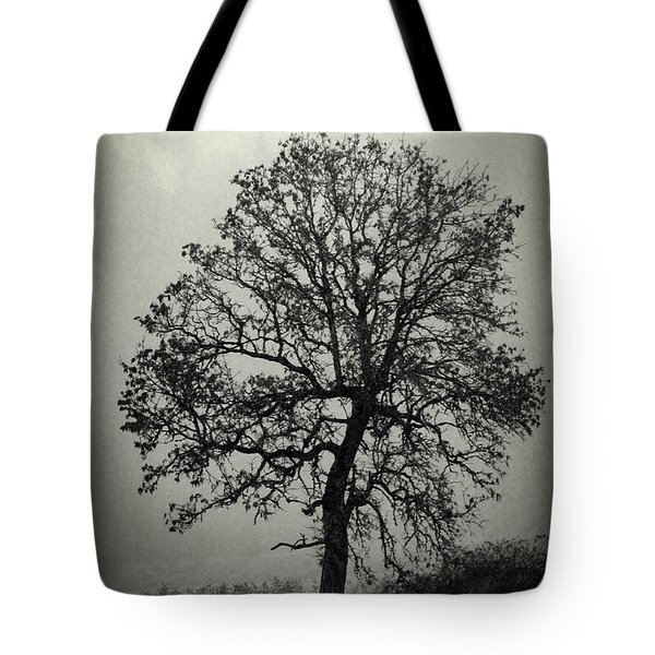 Tote Bag featuring the photograph Age Old Tree by Steve McKinzie