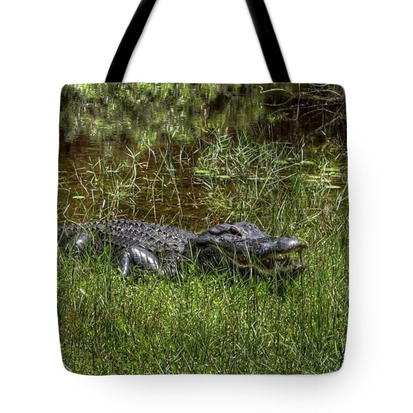 Aggressive Alligator Tote Bag