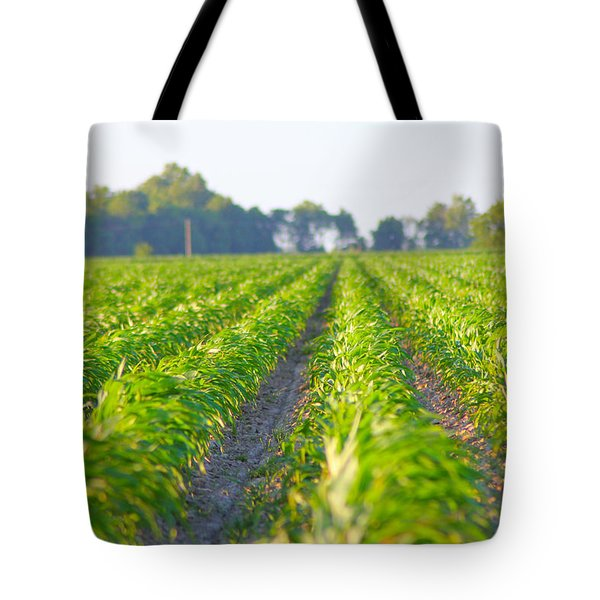 Agriculture- Corn 1 Tote Bag