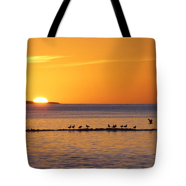 Agua Verde Sunrise Tote Bag by Anne Mott
