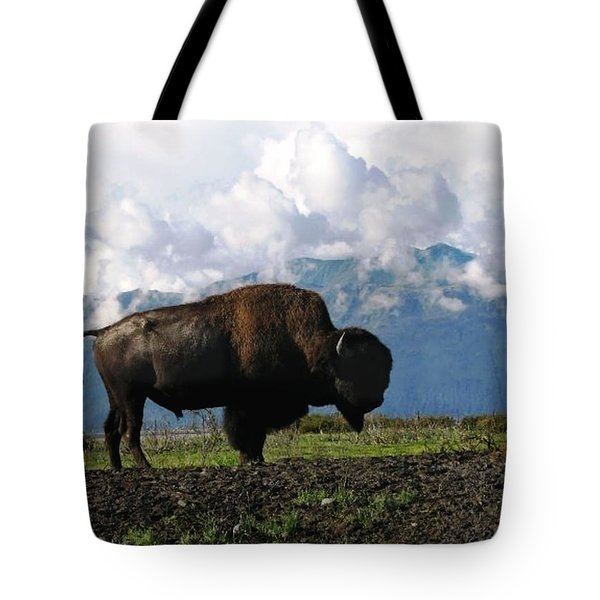 Tote Bag featuring the photograph Alaskan Buffalo by Katie Wing Vigil