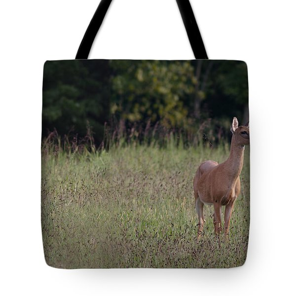 Alert Doe And Fawn Tote Bag