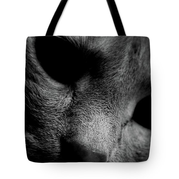 Alfie Two Tote Bag by Jerry Cordeiro