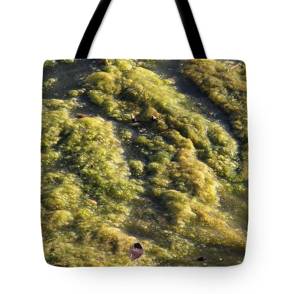 Algae Bloom In A Pond Tote Bag by Photo Researchers, Inc.