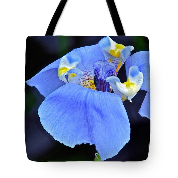 Alien Beauty Tote Bag by Byron Varvarigos