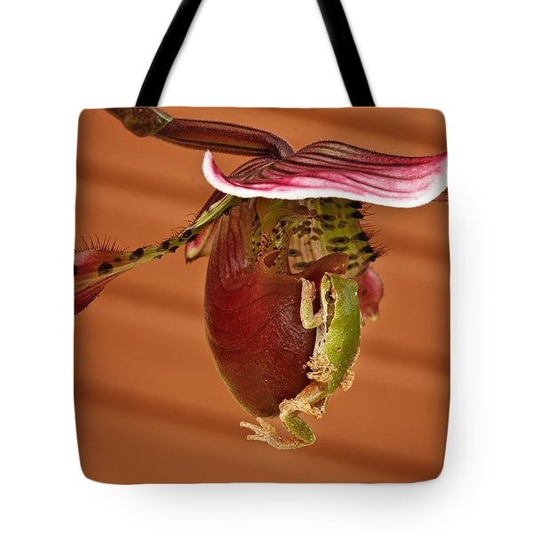 All Aboard Tote Bag by Jean Noren