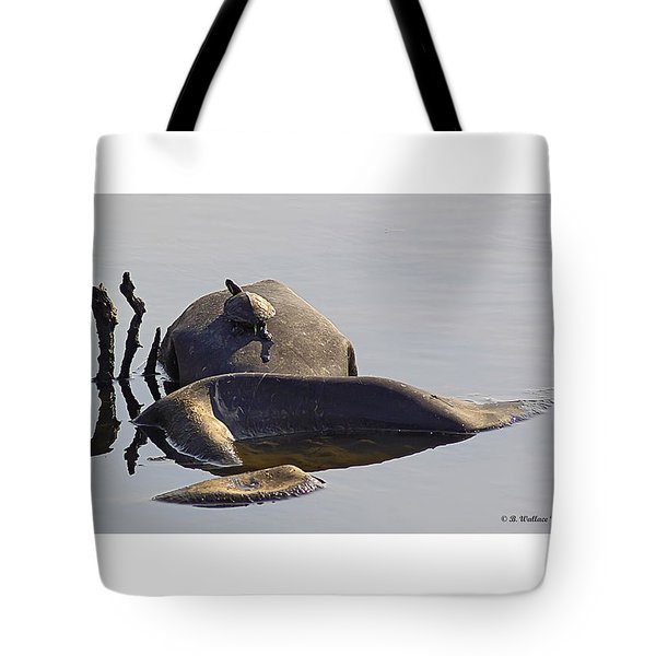 All By Myself Tote Bag by Brian Wallace