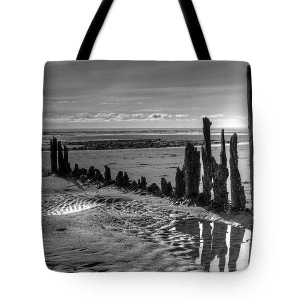 All That Remains Tote Bag by Michele Cornelius