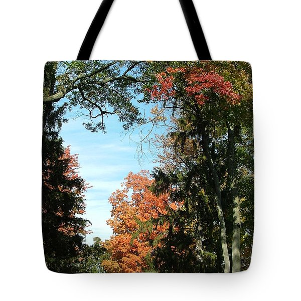 All The Trees Tote Bag