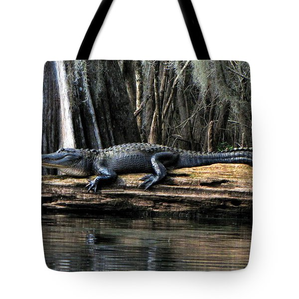 Alligator Sunning Tote Bag