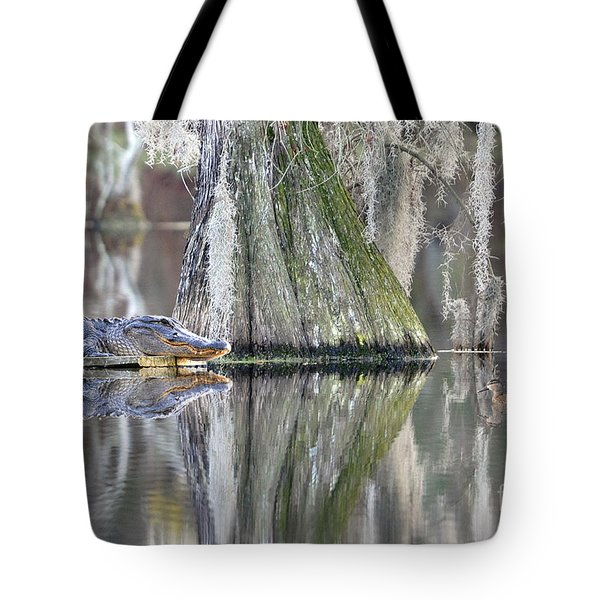 Tote Bag featuring the photograph Alligator Waiting For Dinner by Dan Friend