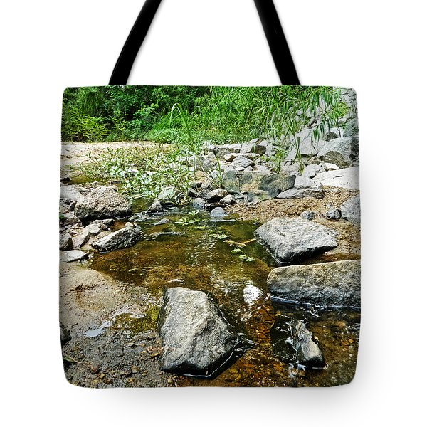 Tote Bag featuring the photograph Almost Dried Up by Ester  Rogers